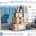 MetziahsCover (1)-page-001